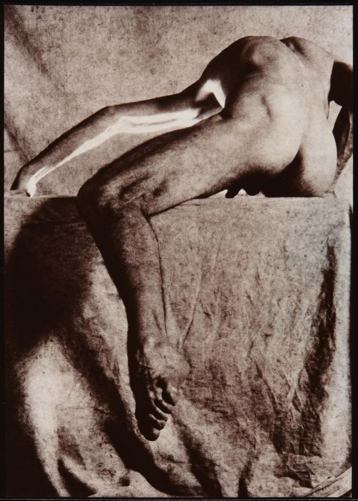 Catany.Sen Título (Nu). Calotipo,1988